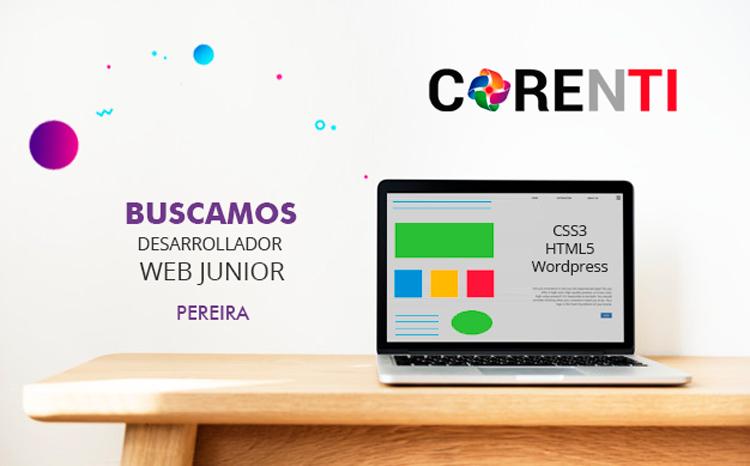 Buscamos desarrollador web junior
